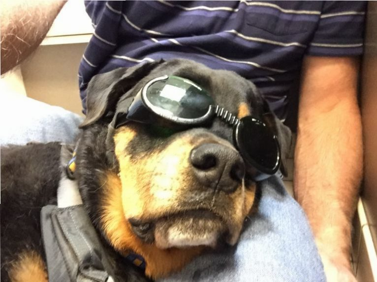 I am looking stylish for my laser treatment