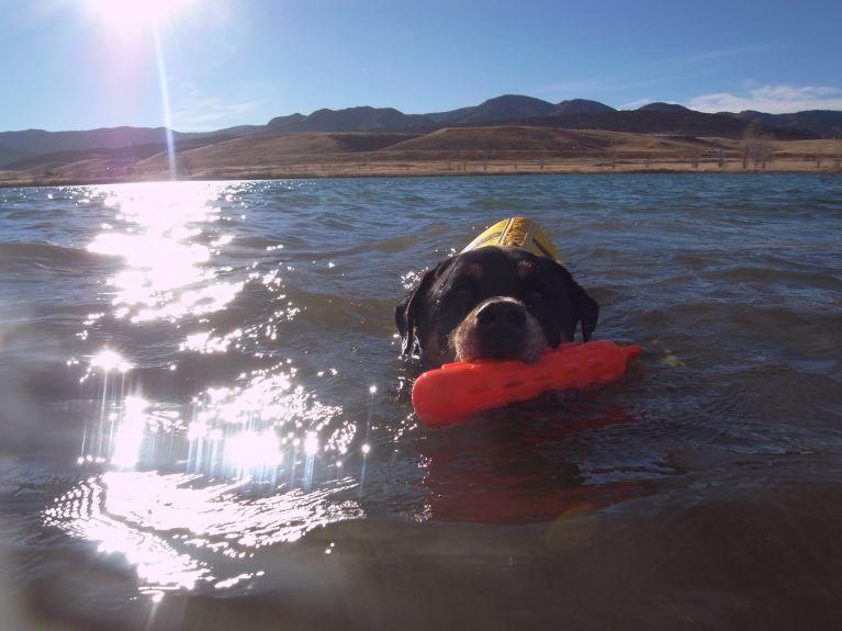 Look at me enjoying the swim of my life.